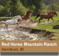 Red Horse Mountain Ranch - Harrison, Idaho