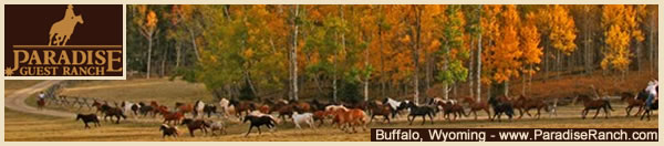 Visit Paradise Guest Ranch in Buffalo, Wyoming!
