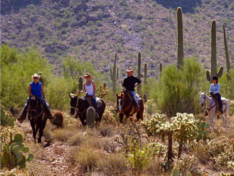 Horseback riding in the Tucson Mountains of Arizona with White Stallion Ranch