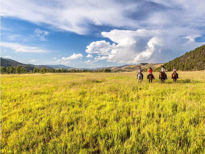 The Ranch at Rock Creek breathtaking views of Montana from horseback.