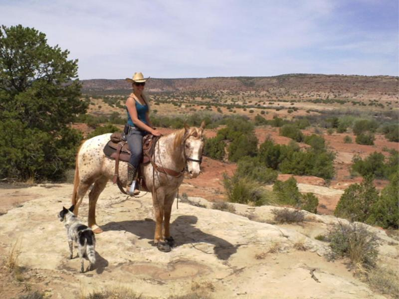 Horseback riding at a New Mexico working cattle ranch Creek Ranch LLC.