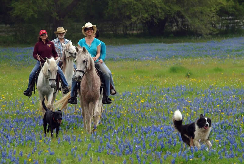 Horseback riding at Blisswood Ranch in Texas