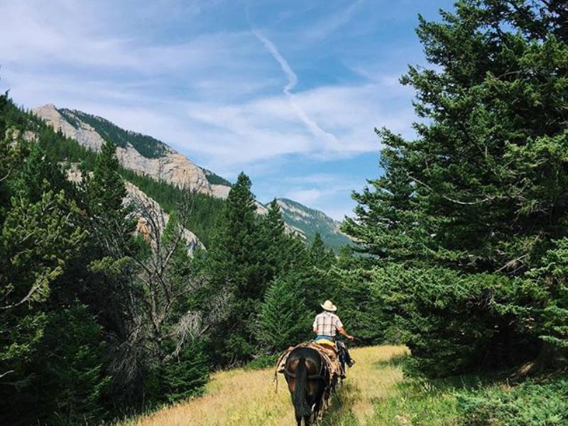 Deep Canyon Guest Ranch beautiful Montana setting is great for horseback riding