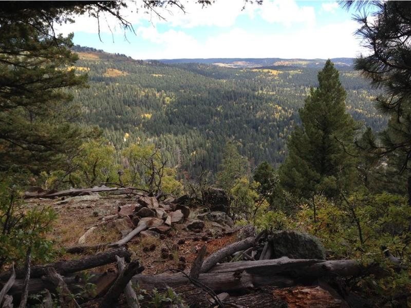 Los Pinos Guest Ranch Horseback riding in the Santa Fe National Forest of New Mexico