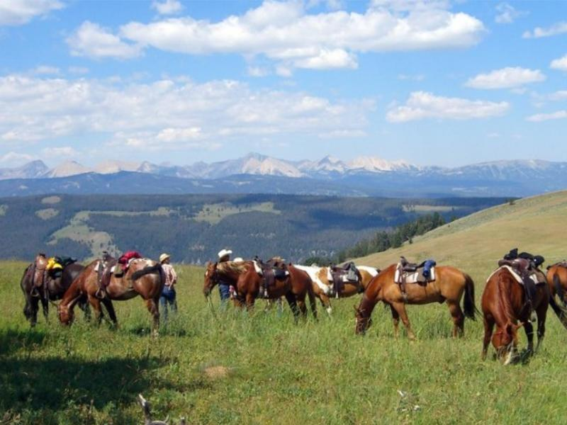 Horseback riding at Montana's Elkhorn Racnh