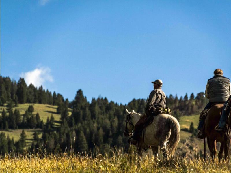 Horseback riding in Montana's Bob Marshall Wilderness with K Bar L Ranch