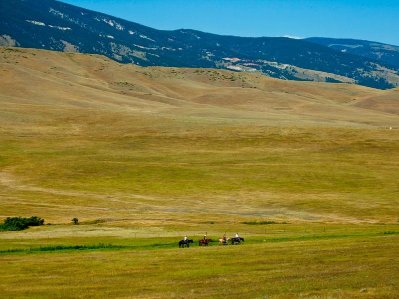 Horseback Riding in Wyoming's Bighorn mountains at Eatons Ranch