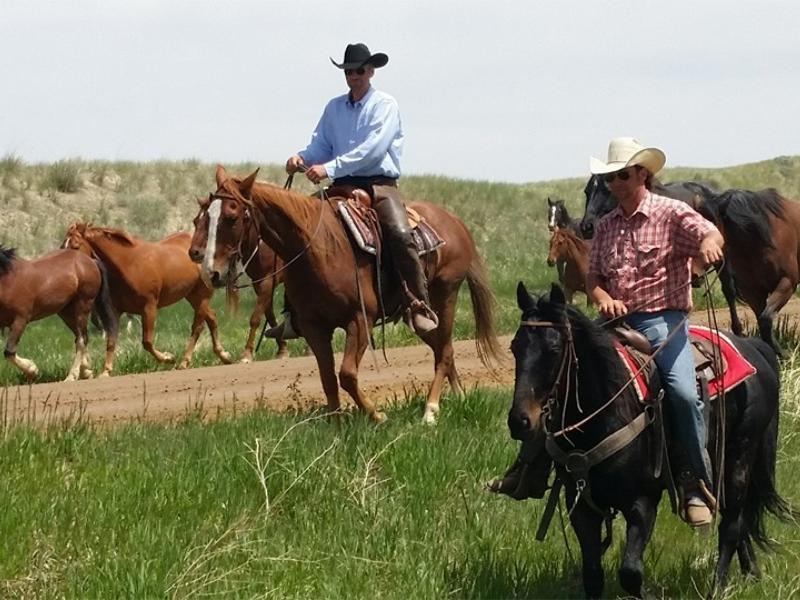 Horse drive at Eatons Ranch is always a great time in Wyoming