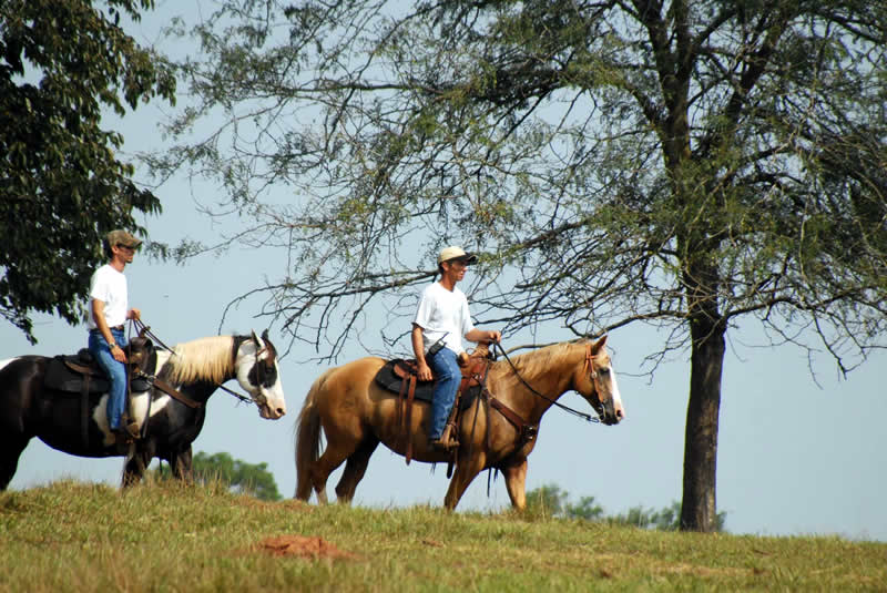 Horseback riding at Southern Cross Guest Ranch in Georgia