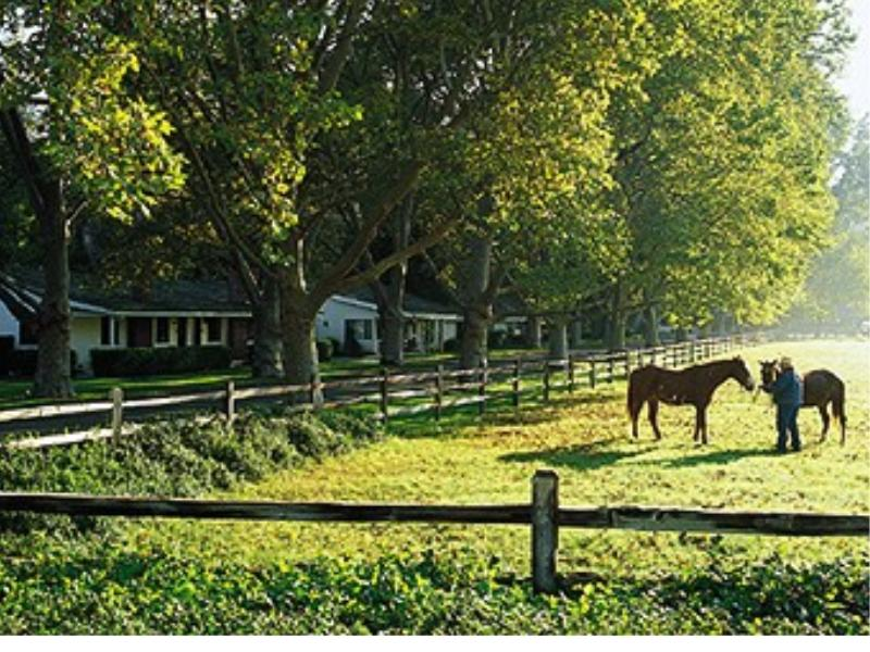 Horseback riding at California Alisal Guest Ranch and Resort