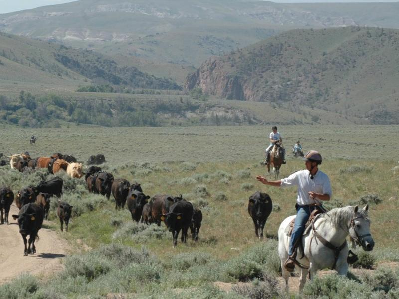 Horseback riding vacation of a lifetime, at Wyoming's Bitterroot Ranch