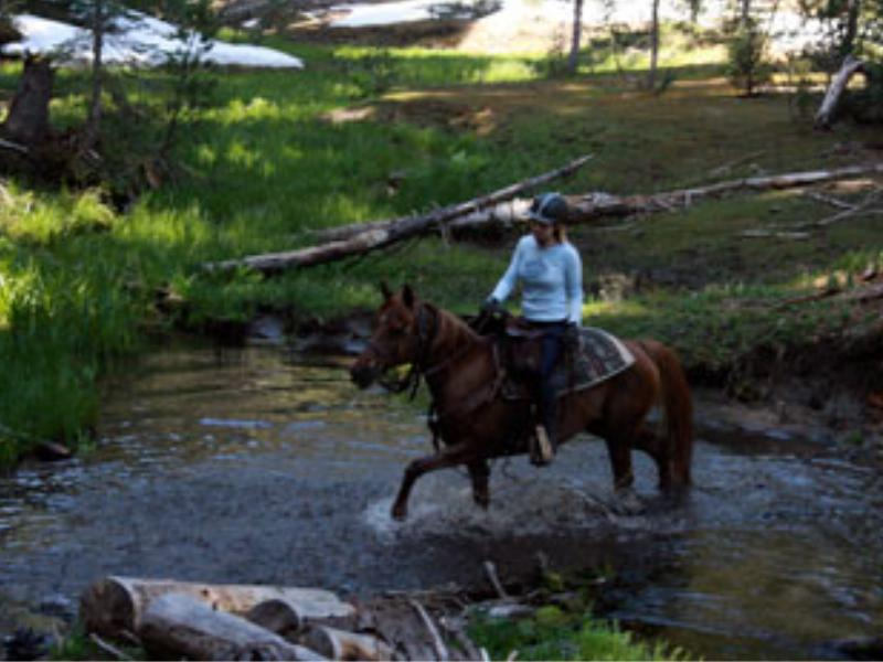 California Horseback trail riding vacations at Marble Mountain Ranch