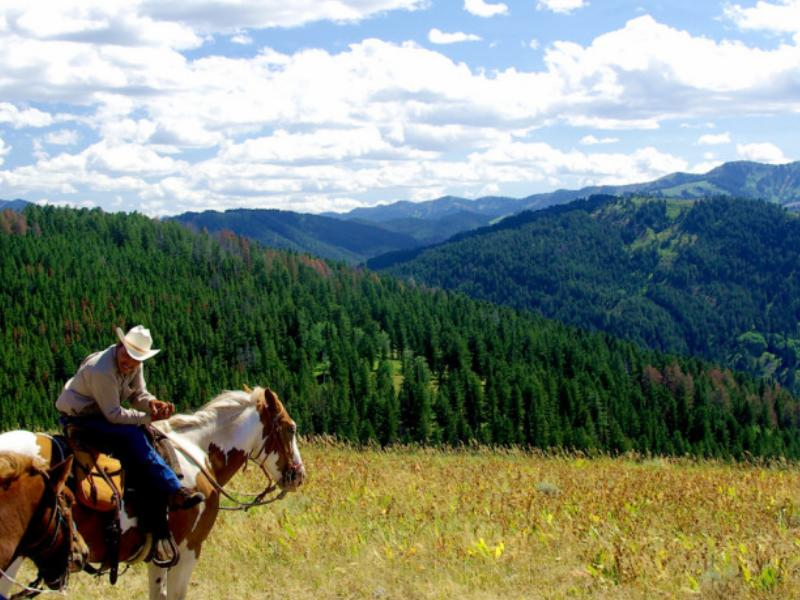 Horseback riding at Deer Forks Ranch, a working cattle ranch in Wyoming.