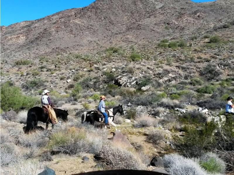Horseback riding in Arizona with Stagecoach Trails Guest Ranch