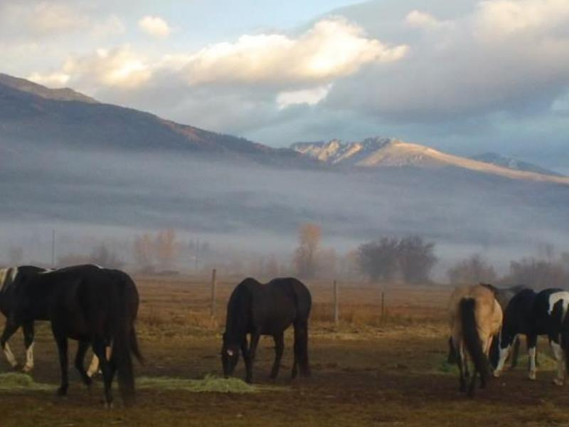 Spotted Horse Ranch has horseback riding, river rafting, fishing, pack trips, close to Grand Teton National Park. Wyoming
