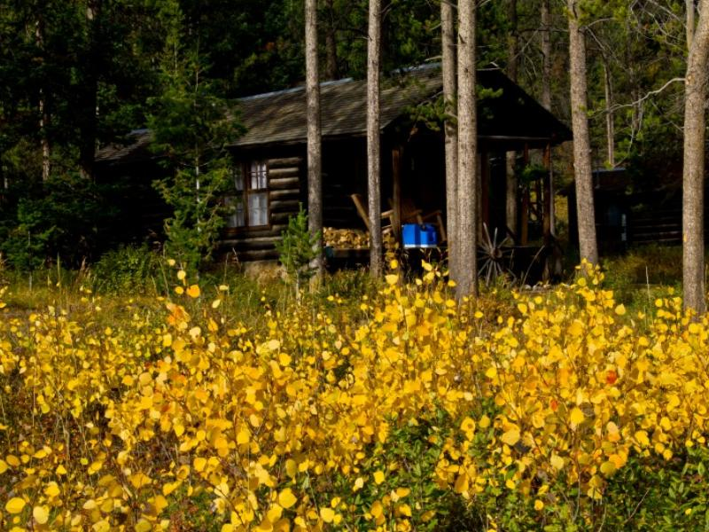 Your cabin at Covered Wagon Ranch, Montana