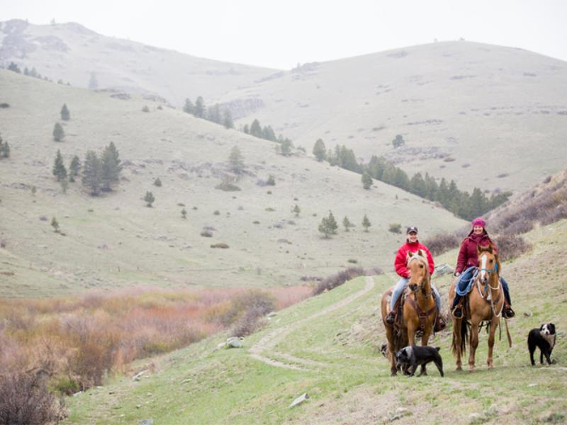 Rocking Z Ranch is a horseback riding vacation deeply rooted in Montana tradition