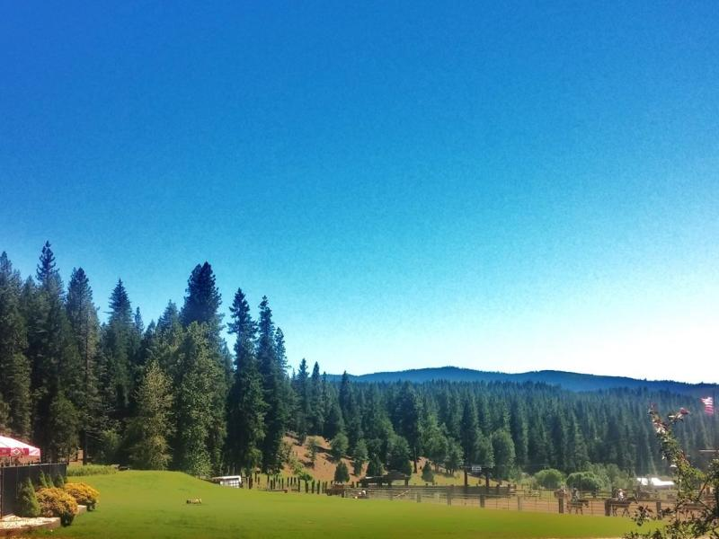 Located in California Plumas Sierra Mountains Greenhorn Creek Guest Ranch