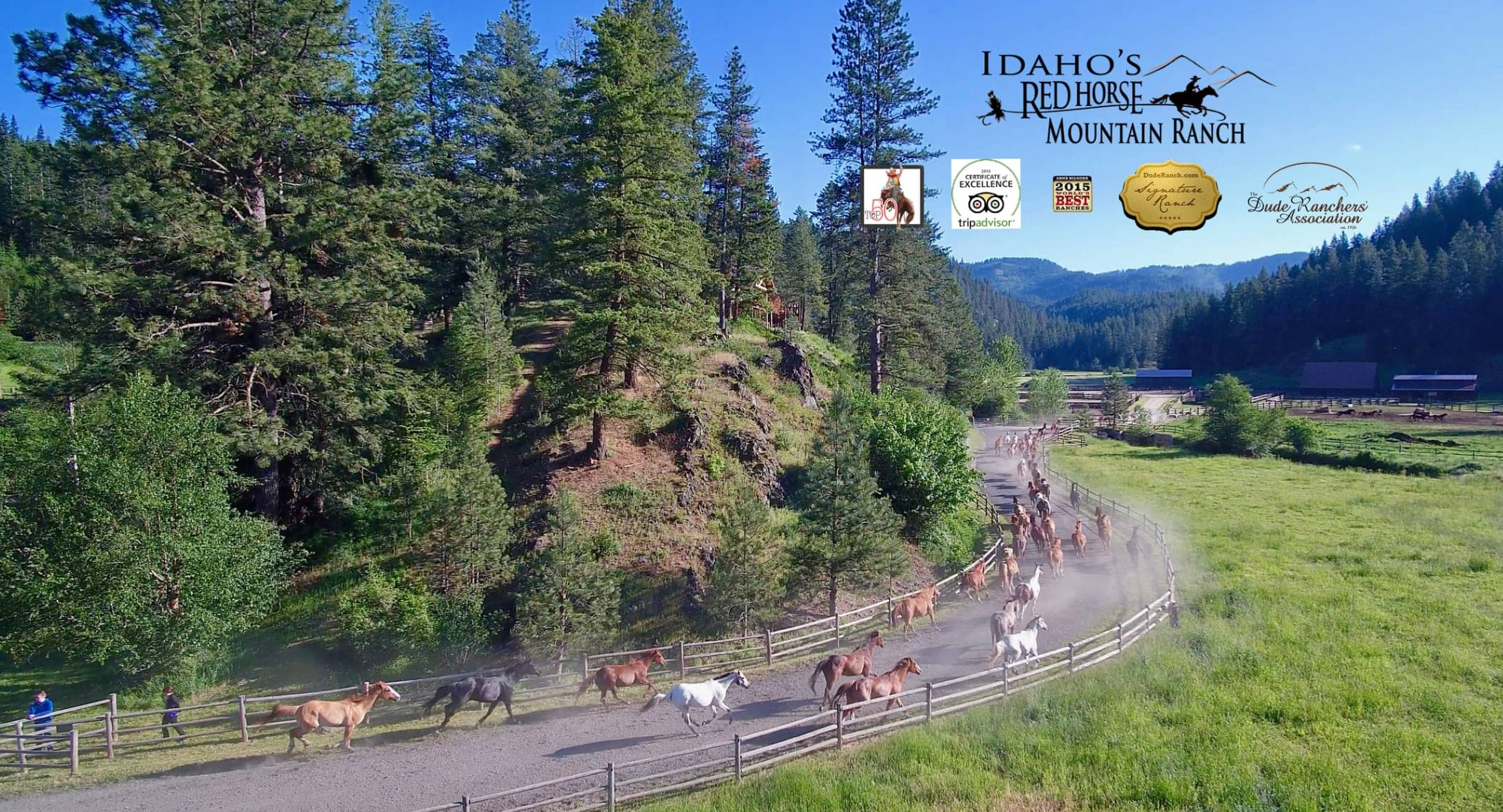 Running of the Herd as guests watch at Red Horse Mountain in Idaho