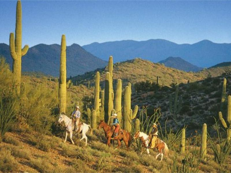 Horseback riding in Arizona with Rancho de los Caballeros