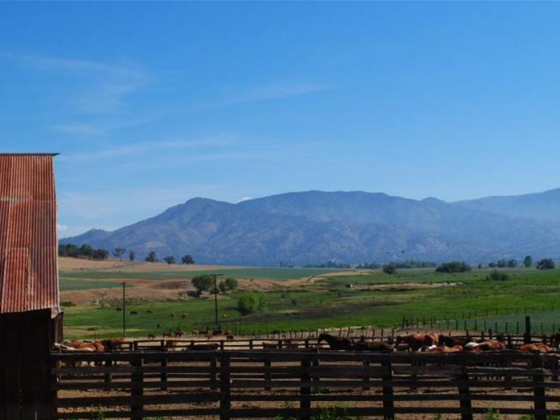 Rankin Ranch horseback riding in the California Tehachapi Mountains