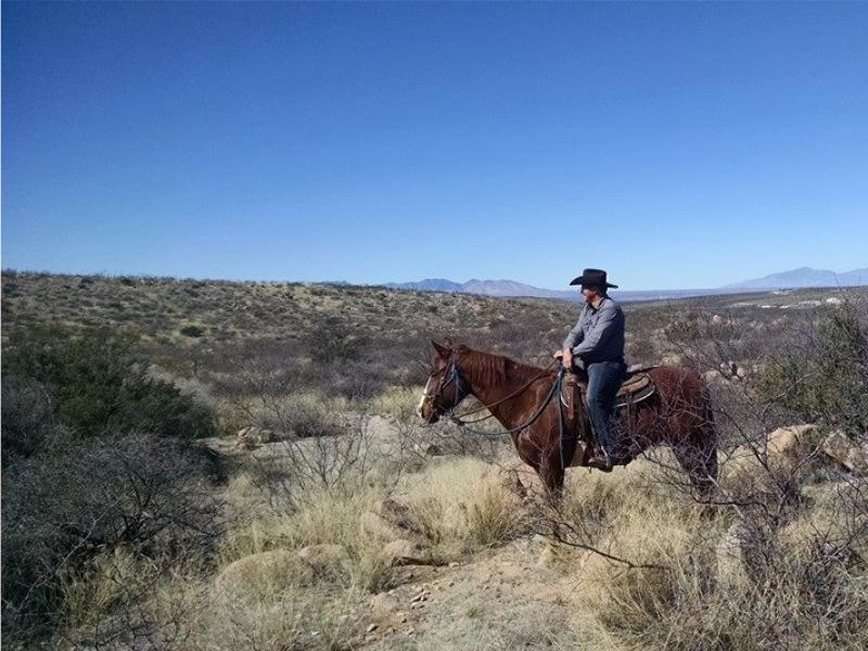 Horseback riding at Tombstone Monument Guest Ranch in Arizona