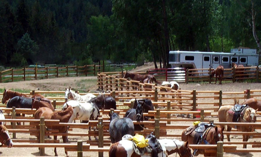 Horseback riding at Harmel's Ranch Resort & Spa in Almont, Colorado