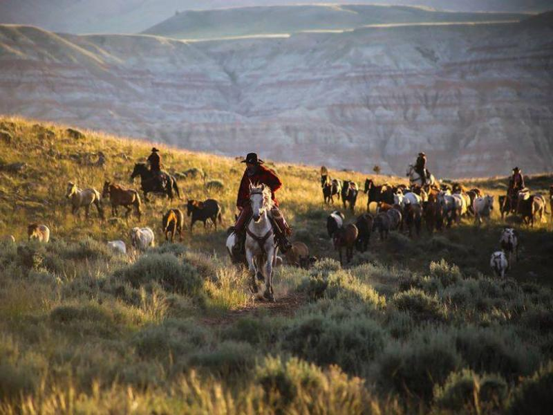 Horseback riding vacation at Wyoming's CM Ranch